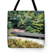 A Place Of Contemplation Tote Bag