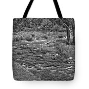A Place Without Time Sketch 2 Tote Bag