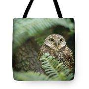 A Portrait Of A Captive Burrowing Owl Tote Bag