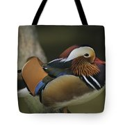 A Portrait Of A Mandarin Duck Tote Bag
