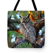 A Portrait Of A Wise Man Tote Bag