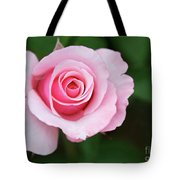 A Pretty Pink Rose Tote Bag