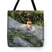 A Pumpkin In Central Park Tote Bag