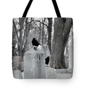 A Quiet Winter Day At The Graveyard Tote Bag