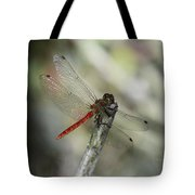 A Red Dragonfly Tote Bag