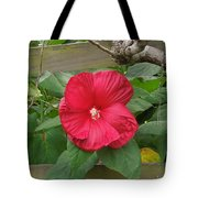 A Red Hibiscus Tote Bag