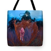 A Red Sea Fan With Sponge Colored Clam Tote Bag
