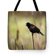 A Red-winged Blackbird Agelaius Tote Bag