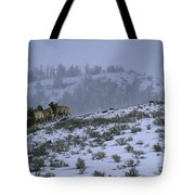 A Reintroduced Wolf Chases A Herd Tote Bag