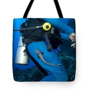 A Remora Attached To A Diver, Kimbe Tote Bag