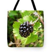 A Ripe Blackberry Tote Bag