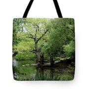 A River Runs Through Central Park  Tote Bag