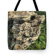 A Rocky Grin Tote Bag