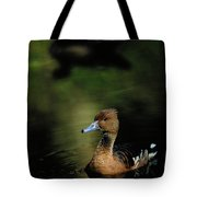 A Ruddy Duck Swims Through The Marsh Tote Bag