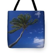 A Scenic View Of A Palm Tree Tote Bag