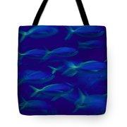 A School Of Fusilier Fish, Caesio Teres Tote Bag