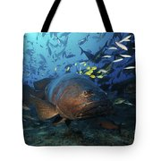 A School Of Golden Trevally Follow Tote Bag