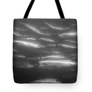 A School Of Silvery Salmon Tote Bag