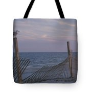 A Seagull Pauses Tote Bag
