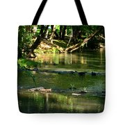 A Secret Place To Meditate Tote Bag