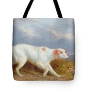 A Setter On The Moor Tote Bag