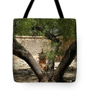 A Shady Rest Tote Bag
