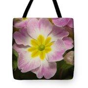 A Shy Flower  Tote Bag