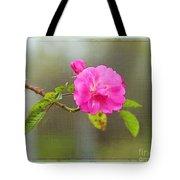 A Single Rose Tote Bag