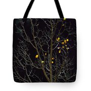 A Small Number Of Leaves Still Cling Tote Bag