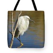A Snowy Egret  Tote Bag