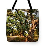 A Southern Stroll Tote Bag
