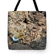 A Spider With The Egg Sack Square Tote Bag