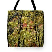 A Splash Of Fall Tote Bag