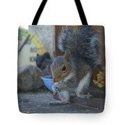 A Squirrel In 55 Degree Weather Tote Bag