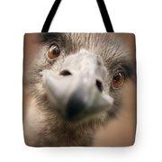 A Strange Look Tote Bag