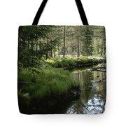 A Stream Wanders Through A Lush Taiga Tote Bag
