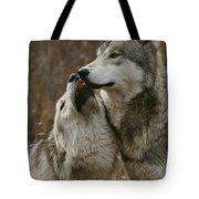 A Submissive Beta Gray Wolf, Canis Tote Bag