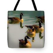 A Swim At Sunset Tote Bag