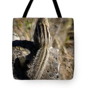 A Tail Untold Tote Bag