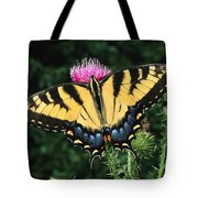 A Tiger Swallowtail Butterfly Feeds Tote Bag