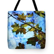 A Time For Change Tote Bag