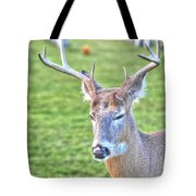 A Time For Prayer Tote Bag