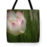 A Touch Of Blush Tote Bag
