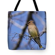 A Touch Of Class Tote Bag