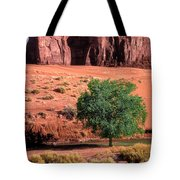 A Touch Of Green At Monument Valley Tote Bag