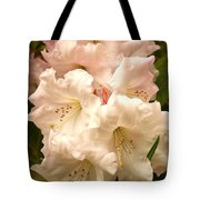A Touch Of Pink Tote Bag by Carol Groenen