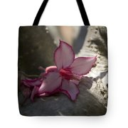 A Touch Of Pink V2 Tote Bag