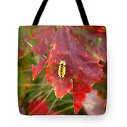 A Touch Of Yellow In Fall Tote Bag