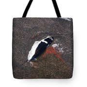 A Treasure Left Behind Tote Bag