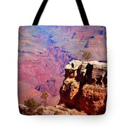 A Tree And The Canyon Tote Bag